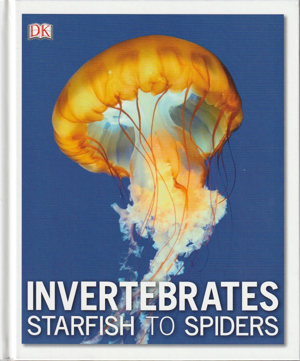 Invertebrates. Starfish to Spiders