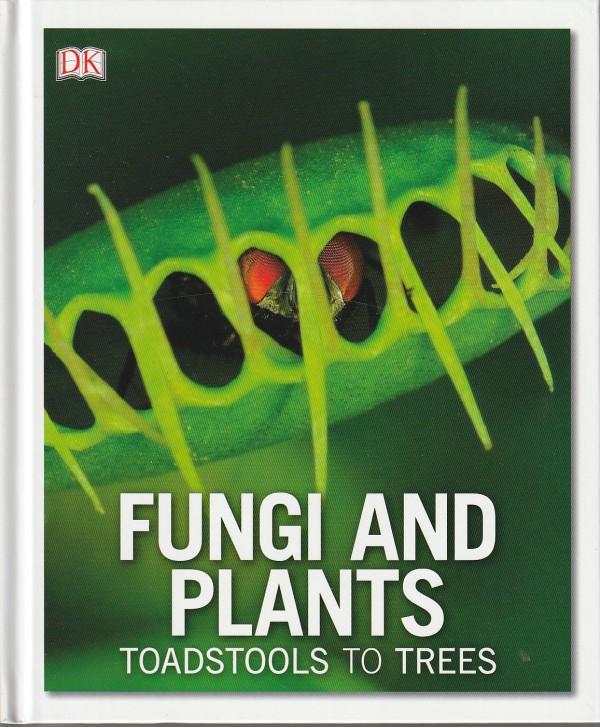 Fungi and Plants